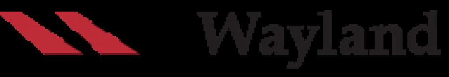cropped-logo-wayland_0-2.png